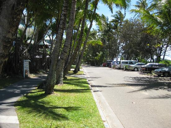 Palm Cove Tropic Apartments: Main Street Palm Cove
