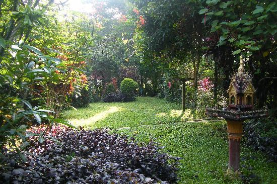 Maylyn Guest House: garden