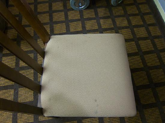 Microtel Inn & Suites by Wyndham Columbia/At Fort Jackson : Dirty Desk Chair