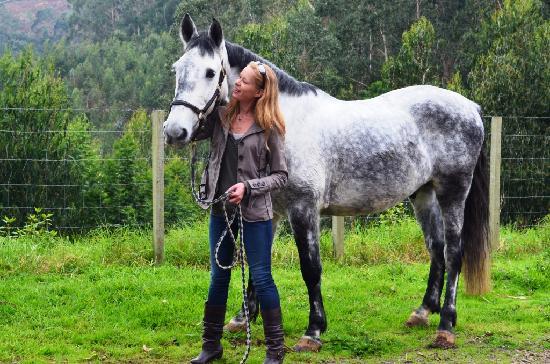 Quinta do Riacho: The beautiful horse I took for a ride....