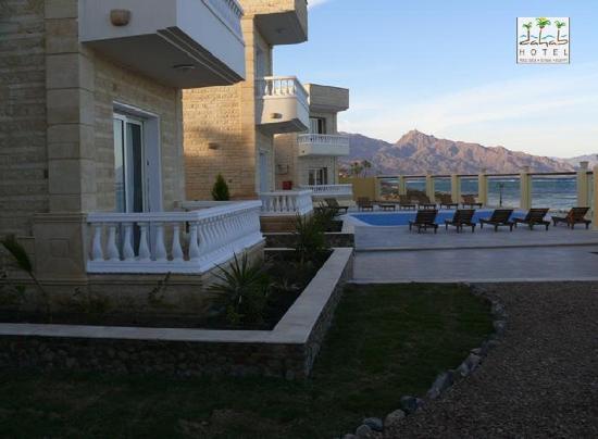 Dahab Hotel: garden