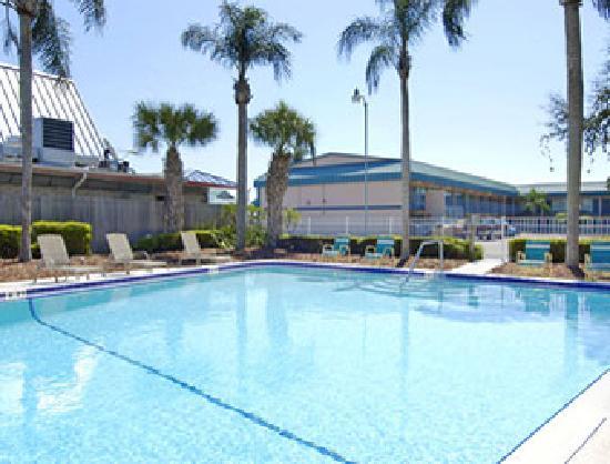 Super 8 Clearwater/US Hwy 19 N : Pool