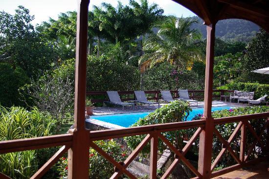Le Jardin Malanga: Piscine vu de la maison de maitre.