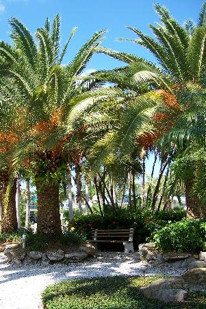 Tropical Beach Resorts: Tropical Gardens surround the property