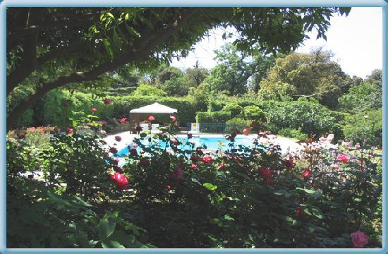 Villa delle Stufe : piscina