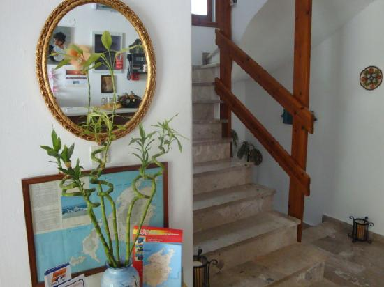 Vassiliki Rooms: reception