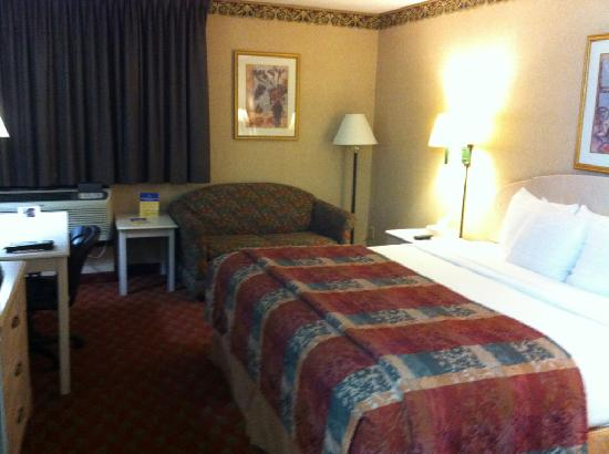 Best Western The Inn at Buffalo Airport: Room with bed