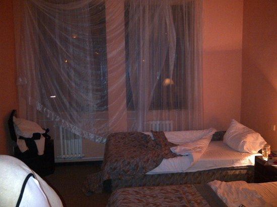 Hotel Branik : the room, no curtains only nets