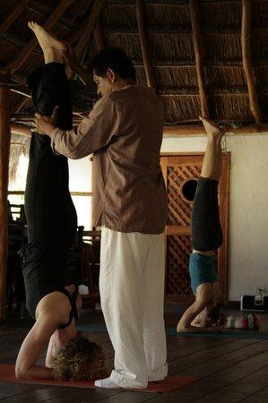 Vastu School of Yoga: Traditional Classical Sivananda Yoga