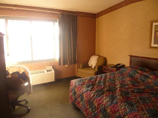 Chicago O'Hare Garden Hotel: A prima vista non male...