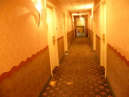 Chicago O'Hare Garden Hotel: Il corridoio