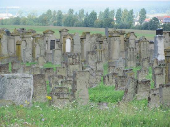 Judische Friedhof Rodelsee: overview