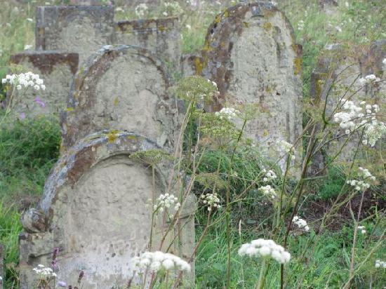 Judische Friedhof Rodelsee: stunning