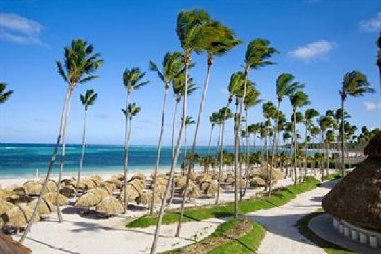 Secrets Royal Beach Punta Cana: Cray beautiful beach!