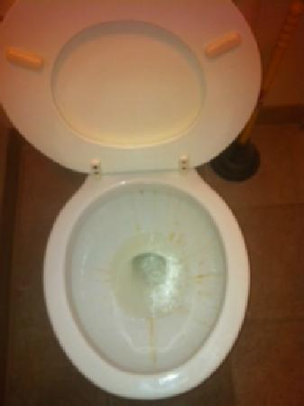 Lake Norfork Resort : Dirty toilet