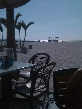 Bongos Beachside Bistro: What a view.