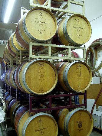 Shinn Estate Vineyards: Oak Casks at Waters Crest