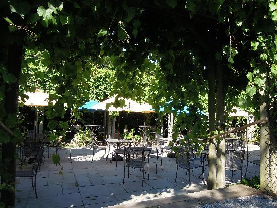 Shinn Estate Vineyards: Beautiful & Romantic - Lenz Winery