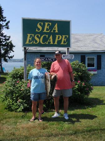 Sea Escape Cottages: fishing with the Captain