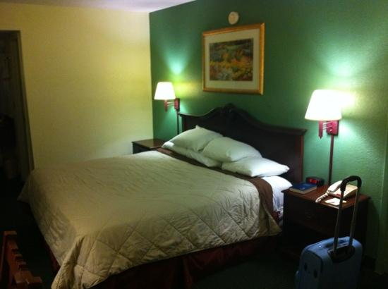 Travelodge Tampa/ West Of Busch Gardens: The bed