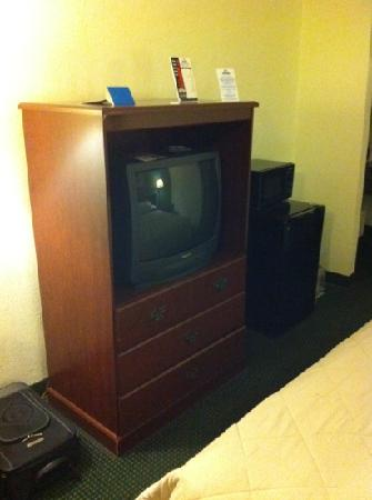Travelodge Tampa/ West Of Busch Gardens: tv, fridge and microwave