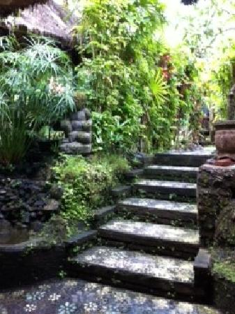 Ubud Sari Health Resort: Stairs leading back to your rooms from the treatment area