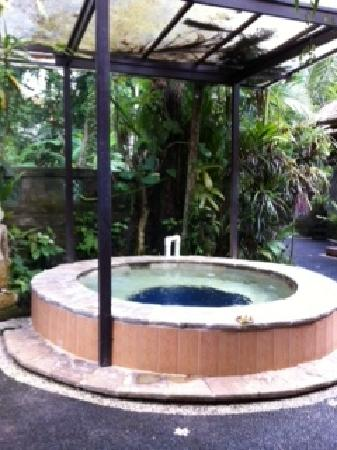 Ubud Sari Health Resort: Spa