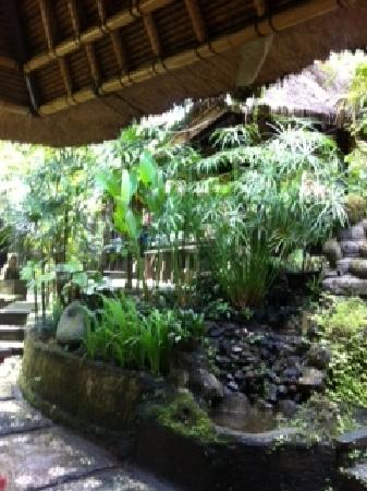 Ubud Sari Health Resort: Water Feature