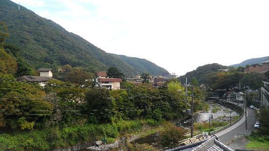 Hakone Senkei Plaza Inn: View from the room