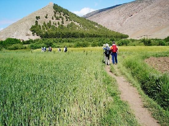 Ait Bougmez Valley : short trek along bougmez