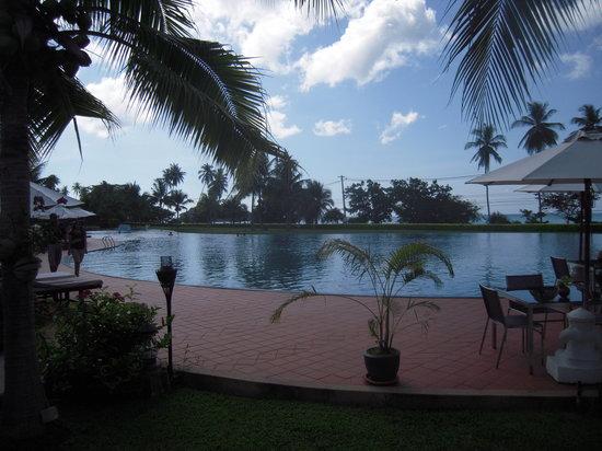 Sofitel Krabi Phokeethra Golf & Spa Resort: pool from bedroom