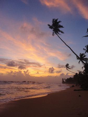 Budde's Beach : sunset
