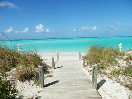 Parrot Cay: walking to the beach