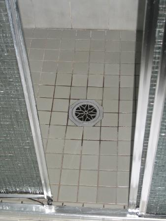 Fountain Court Motor Inn: shower door
