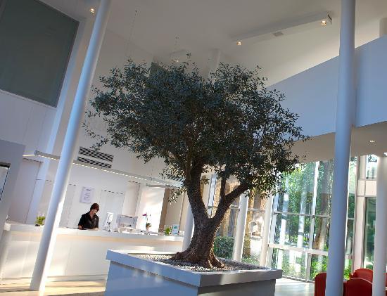 Ariane hotel 사진