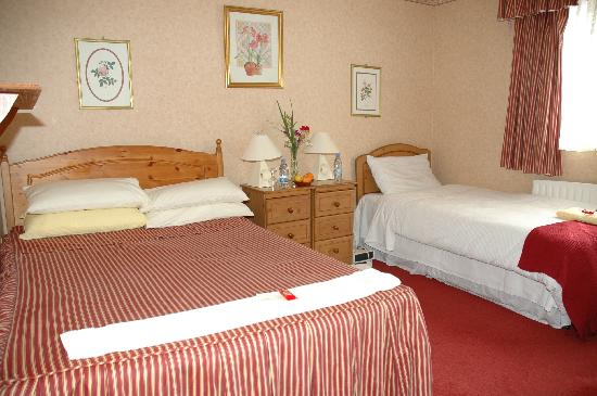 Aisling Bed and Breakfast: Twin Room