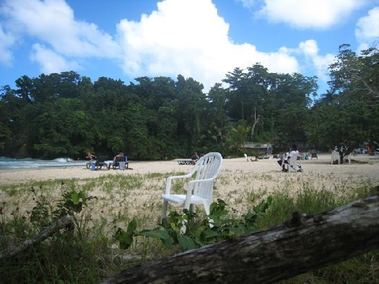 Frenchman's Cove: Beach