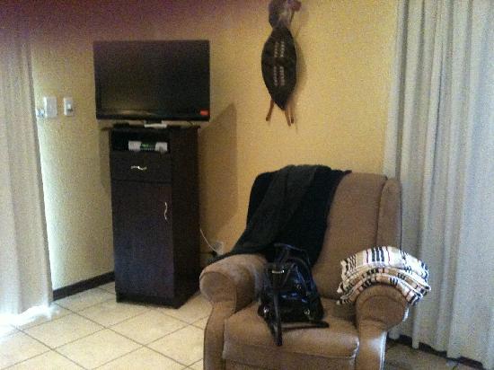Abangane Guest Lodge: corner with tv