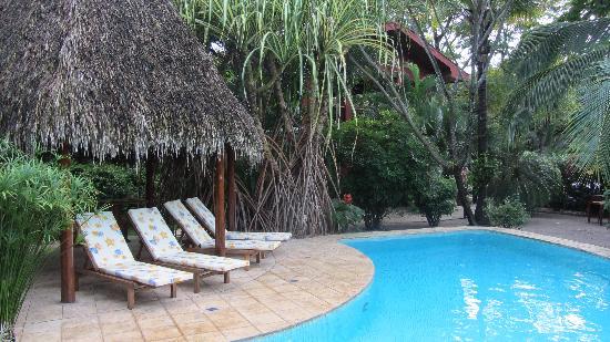 Hotel Cantarana: Pool