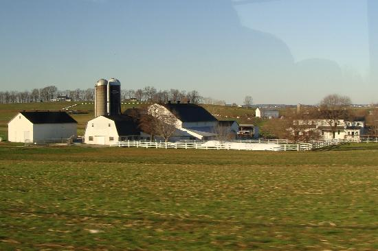 Bird-In-Hand Family Inn : Another Amish Farm