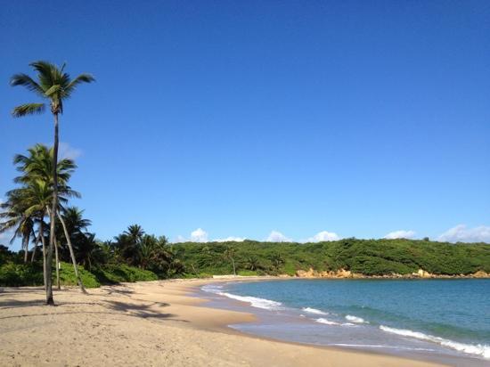 Hyatt Hacienda Del Mar: Hyatt beach, nice and quiet