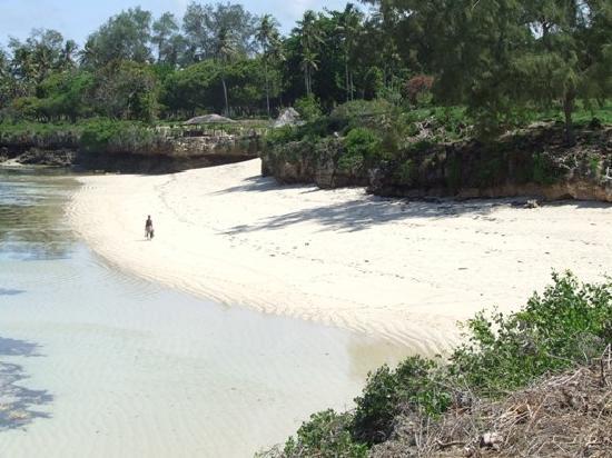 Hillpark Tiwi: private beach