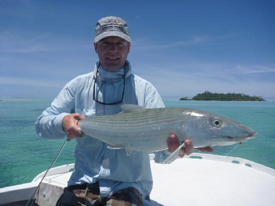 Bonefish - E2's Way: well into the backing