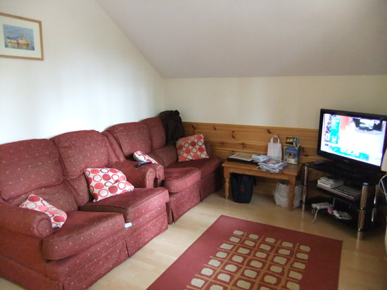 Bulworthy Forest Lodges: The living area, sofas were a bit old but comfy and nice modern TV