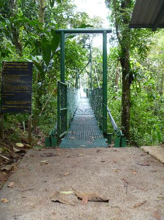 Tirimbina Lodge: Hanging bridge/Trail Entrance