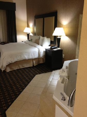 Hampton Inn & Suites Longview North: suite