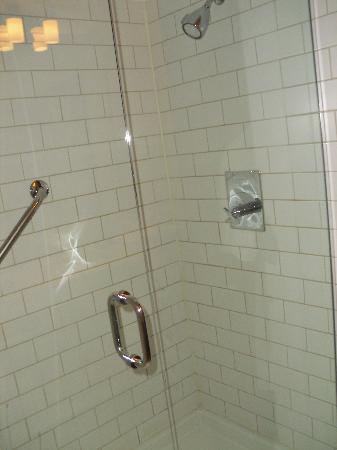 Glass-enclosed shower, but no bathtub.