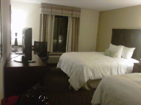Hampton Inn & Suites Birmingham/280 East-Eagle Point: Very small rooms, but pretty.