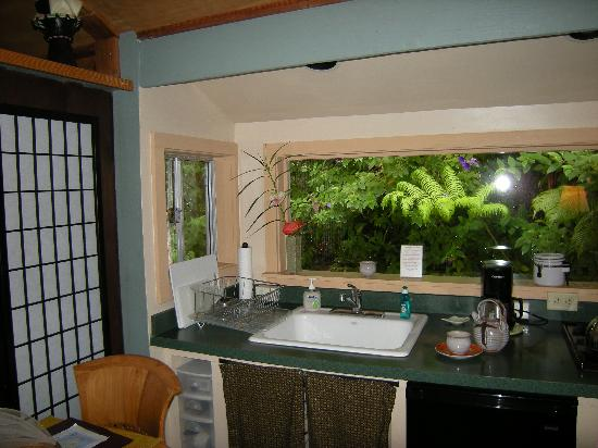 Volcano Artist Cottage: Jungle view from kitchen