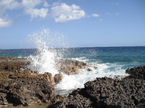 Club Amigo Carisol Los Corales: Les rochers
